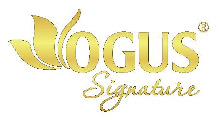 OGUS Signature – Hoa giấy nghệ thuật -