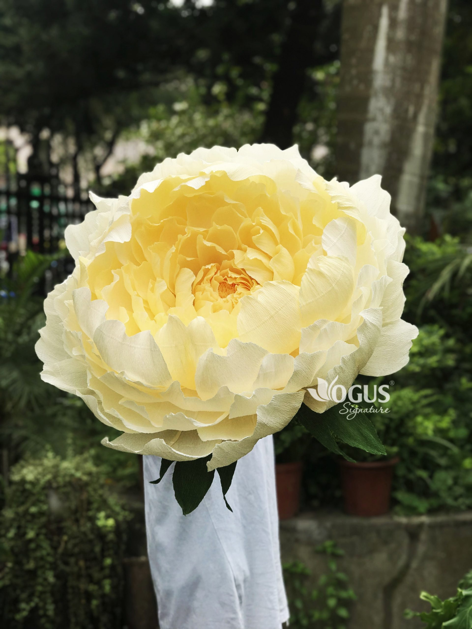 Không gian bừng vẻ sang trọngvới cây hoa mẫu đơn khổng lồ Ogus Signature