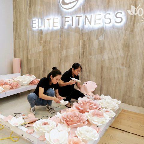 Ogus x Elite Fitness – Tô điểm không gian với backdrop hoa hồng khổng lồ Ogus