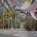 Đỉnh cao nghệ thuật tạo hình – lạc vào cung điện lồng chim như cổ tích