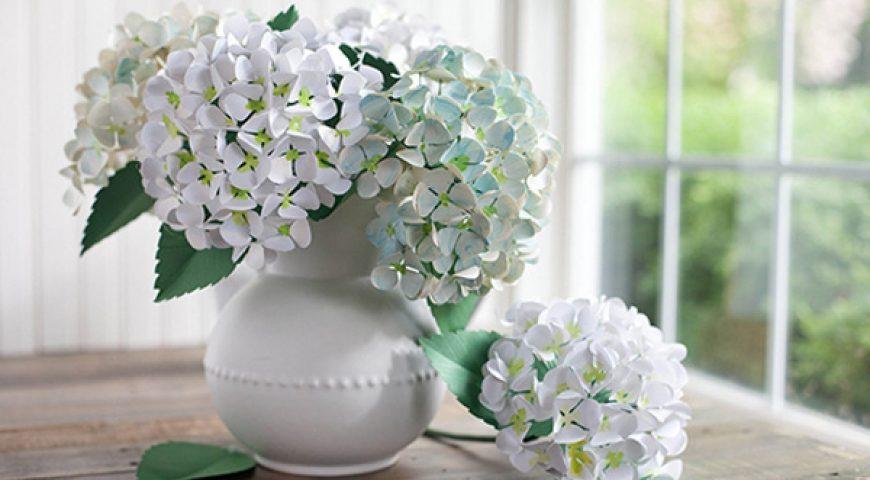 Hoa cầu hôn bên những nàng dâu tháng 11 – Hoa cẩm tú cầu